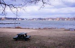 Ławka stoi na plaży obok jeziora zdjęcia royalty free