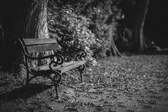 Ławka w cmentarnianym parku - czarny i biały obrazy royalty free