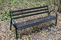 ławka w jesień parku Zdjęcie Royalty Free