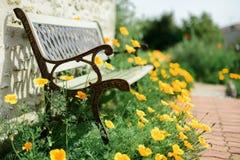 Ławka w ogródzie otaczającym maczkami Zdjęcia Royalty Free
