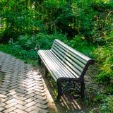 Ławka w parku Zdjęcie Royalty Free