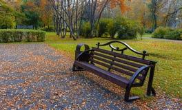 Ławka w parku na chmurnym jesień dniu zdjęcia stock