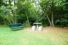 Ławka w parku obfita roślinność fotografia royalty free