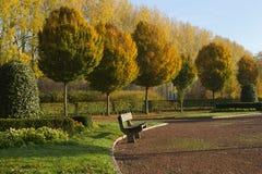 Ławka w parku przy jesienią Fotografia Royalty Free