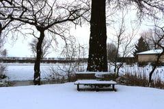Ławka w parku z śniegiem w zimie zdjęcie royalty free