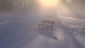 Ławka w zima parku i ranek mgła z światłem słonecznym zdjęcie wideo