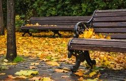 Ławka zakrywająca z liśćmi w jesieni obraz stock