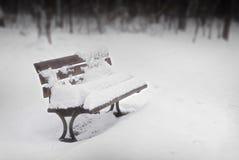 ławka zakrywający parka śnieg Fotografia Royalty Free