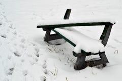 ławka zakrywający parka śnieg Zdjęcia Royalty Free