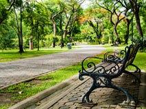 Ławka, zieleń park Zdjęcie Stock