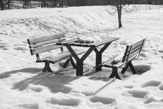 Ławki i stół zakrywający od śniegu obraz royalty free