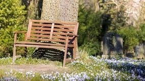 Ławki i wiosny łąka obraz stock