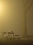 ławki mgła. zdjęcia royalty free