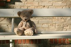 ławki niedźwiadkowy miś pluszowy Obraz Royalty Free