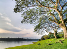 ławki pusty jeziora parka brzeg zmierzch zdjęcie royalty free