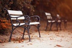 Ławki w jesień parku Zdjęcia Royalty Free