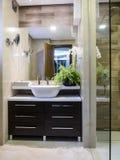 łazienki pucharu wnętrza ręcznik Zdjęcie Royalty Free