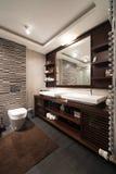 łazienki pucharu wnętrza ręcznik Obraz Royalty Free