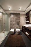 łazienki pucharu wnętrza ręcznik Obraz Stock