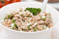 Łeb z tuńczykiem, domowej roboty serem i koperem, zakończenie Zdjęcia Stock