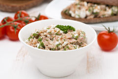 Łeb z tuńczykiem, domowej roboty serem i ziele, Fotografia Stock