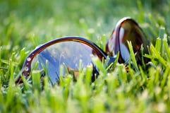 łgarscy trawa okulary przeciwsłoneczne fotografia stock