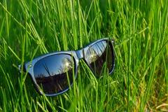 łgarscy trawa okulary przeciwsłoneczne Obrazy Royalty Free