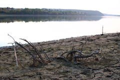 Łożysko osuszka w górę rzeki Zdjęcia Stock