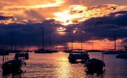 Łodzie i gul w pięknym spokojnym zmierzchu przy karaibską plażą Zdjęcia Stock