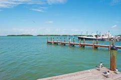 Łodzie motorowa, molo, seagulls, ptaki, Key West, klucze, Cayo Hueso, Monroe okręg administracyjny, wyspa, Floryda fotografia stock