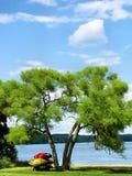 Łodzie pod drzewem Zdjęcia Royalty Free