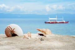 Łodzik i inne konchy z skarbami boksujemy na białego piaska tropikalnej plaży turkusowy filipiński morze przy słonecznym dniem Zdjęcia Royalty Free