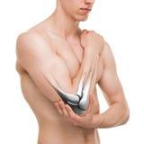 Łokcia złącze odizolowywający na bielu - anatomii samiec Zdjęcia Stock