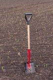 Łopata stojaki w ziemi w polu, zdjęcia stock