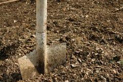 Łopata w ziemi, uprawiać ogródek/rolniczy pracujący narzędzie Obraz Stock