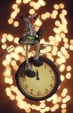 Łosia amerykańskiego obsiadanie na zegarze zdjęcia stock