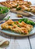 Łososia i brokułów tarta Obraz Royalty Free