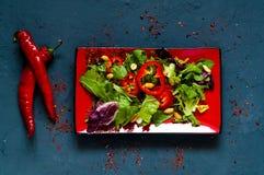 Łososiowa potrącenie sałatka na czerwień talerzu na błękitnym tle beton, żywności organicznej pojęcie zdrowy pojęcia łasowanie obrazy stock