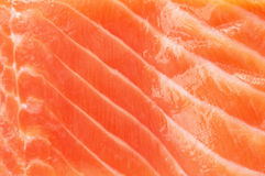 łososiowa zbliżenie tekstura Zdjęcie Royalty Free