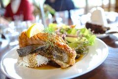 Łososiowi ryż Zdjęcie Royalty Free