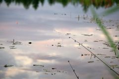 Łowiący pławika na wodnym odbiciu relaksuje czochrę fotografia stock