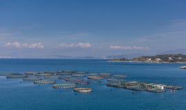 Łowić gospodarstwo rolne w Ionian morzu z wybrzeża Północny Corfu Grecja Zdjęcia Stock