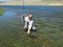 Łowić - mongolian osman zdjęcia stock