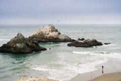 Łowić na wybrzeżu Pacyficzny ocean Zdjęcie Royalty Free