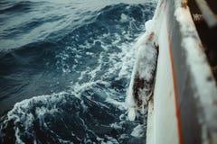 Łowić statek jest pływać przy morzem Obraz Royalty Free