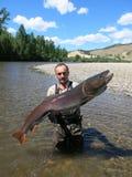 Łowić - taimen ryba Obraz Royalty Free