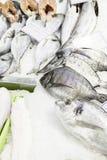 łowi świeżego rynek Fotografia Stock