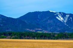 Łowiecka stora w Alps zdjęcie royalty free