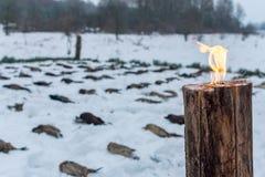 Łowiecki sezon, ptasi polowanie Tradycyjna postawa trofea Ptak rozkładają wśród pochodni w śniegu zdjęcie stock