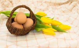 łozinowi koszykowi jajka obraz stock